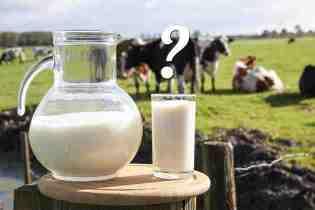 Copia di latte-mucca_1427964014