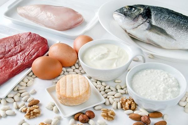 Proteine-animali-vegetali