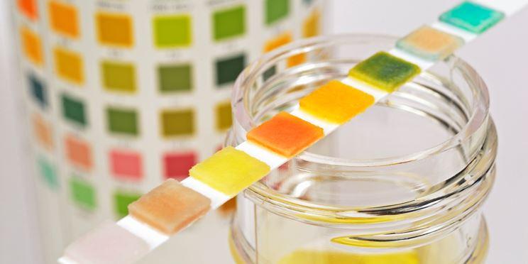 acidificare-le-urine.jpg